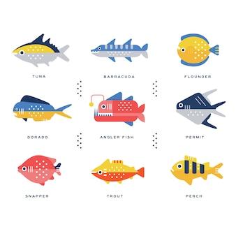 Colección de peces de mar y río y nombre de letras en ilustraciones en inglés