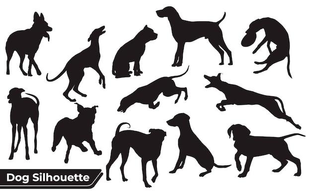 Colección de perro animal en diferentes posiciones.