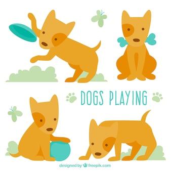 Colección de perro lindo jugando
