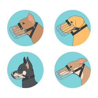 Colección perros con bozal plano