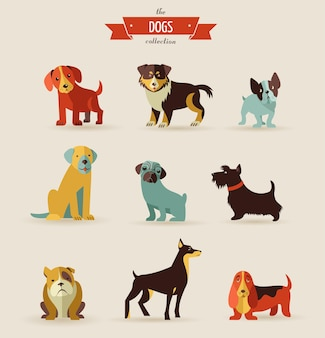 La colección de perros - conjunto de vectores de iconos e ilustraciones.