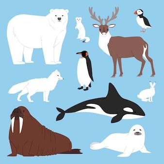 Colección de personajes de oso polar o pingüino de dibujos animados de animales árticos con renos de ballena y sello en la ilustración de conjunto de la antártida de invierno cubierto de nieve