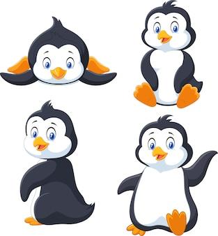 Colección de pingüinos de dibujos animados