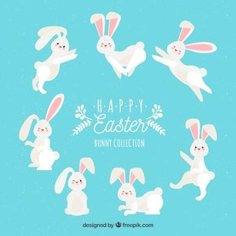 Colección plana de conejo de pascua