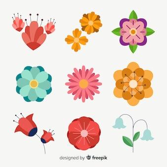 Colección plana de flores y hojas