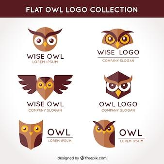 Colección plana de logos de búhos