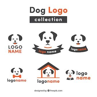 Colección plana de logos de perros con detalles naranjas