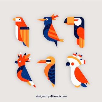 Colección plana de pájaros