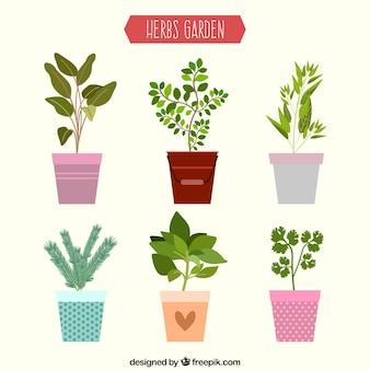 Colección plana de plantas de jardín