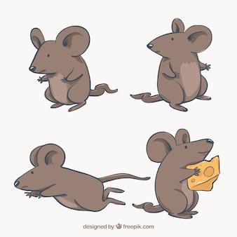 Colección plana de ratones con diferentes poses