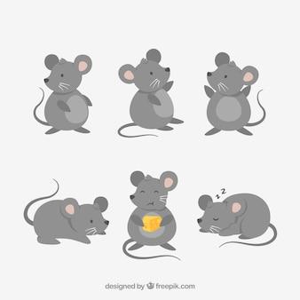 Colección plana de ratones Vector Premium