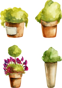 Colección de plantas de acuarela en macetas de barro.