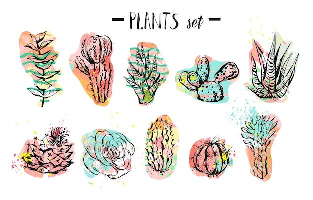Colección de plantas, cactus y suculentas creativas gráficas abstractas dibujadas a mano
