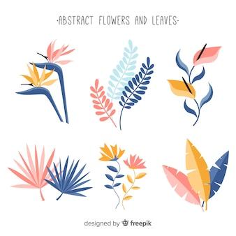 Colección plantas dibujadas a mano