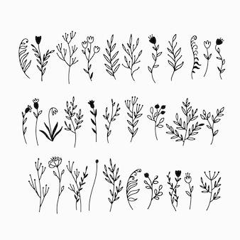 Colección de plantas de doodle