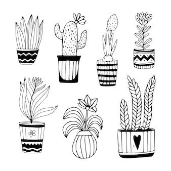 Colección de plantas de interior dibujadas a mano. doodle florales en macetas.