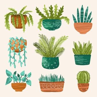 Colección de plantas de interior dibujadas a mano