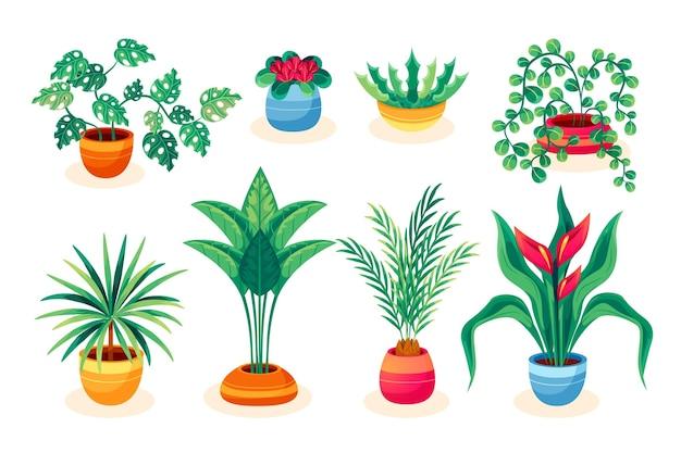 Colección de plantas de interior de ilustración plana