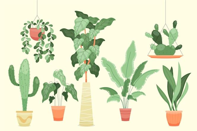 Colección de plantas de interior planas orgánicas
