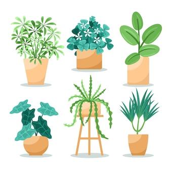 Colección de plantas de interior planas