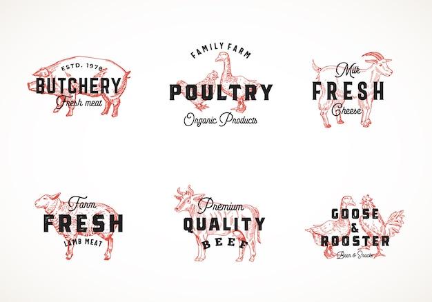 Colección de plantillas de logotipos retro de ganado y aves de corral de calidad superior. bocetos de animales domésticos y aves vintage dibujados a mano con tipografía elegante, cerdo, vaca, pollo, etc. conjunto de etiquetas