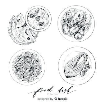 Colección platos de comida ricos