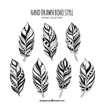 Colección de plumas decorativas dibujadas a mano
