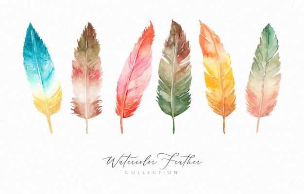 Colección de plumas dibujadas a mano acuarela