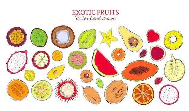 Colección de productos exóticos naturales de bosquejo coloreado