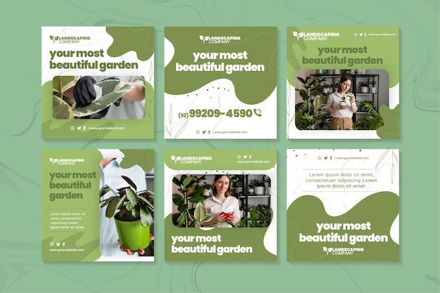 Colección de publicaciones de instagram de negocios de jardinería