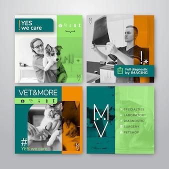 Colección de publicaciones de instagram para negocios veterinarios