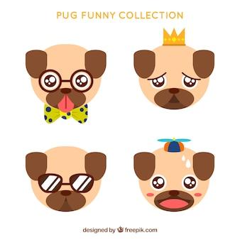 Colección de pug divertido