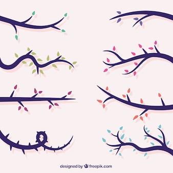 Colección de ramas de árboles