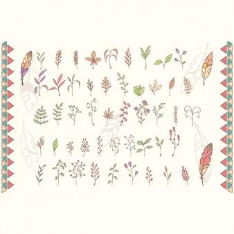 Colección de ramas coloridas