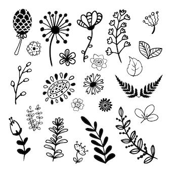 Colección de ramas dibujadas a mano