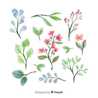 Colección de ramas florales artísticas de acuarela