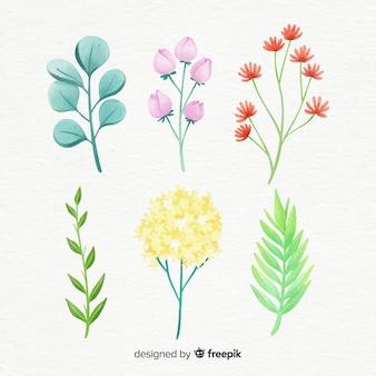 Colección de ramas florales en estilo acuarela