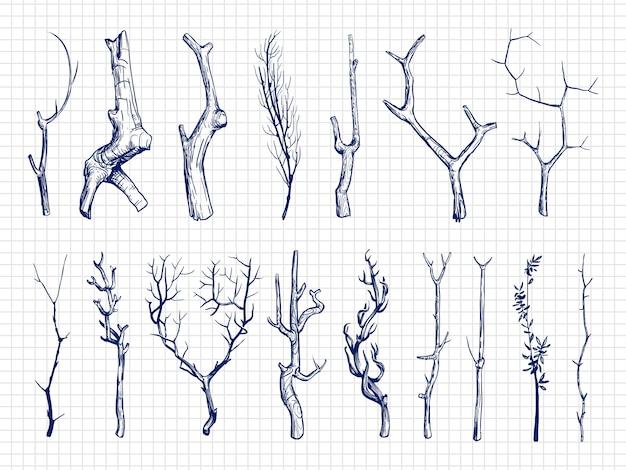 Colección de ramas de madera dibujada a mano