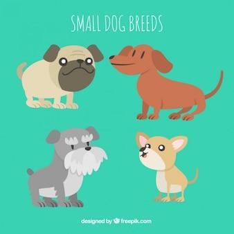 Colección de razas de perritos