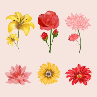 Colección realista de flores de primavera