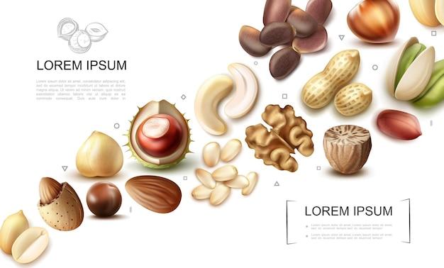 Colección realista de frutos secos orgánicos con anacardo, pistacho, castaña, macadamia, nuez moscada, nuez, avellana, almendra, cacahuete, pino, nueces de brasil
