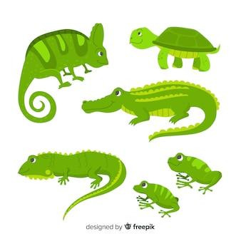 Colección reptiles tropicales dibujados a mano