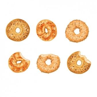Colección de rosquillas del desayono