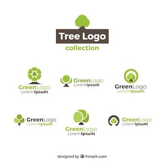 Colección de seis logotipos de árboles
