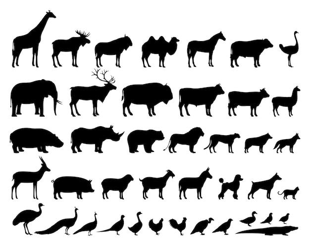 Colección de siluetas de animales domésticos y salvajes.