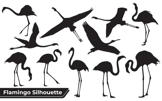 Colección de siluetas de bird flamingo en diferentes posiciones.