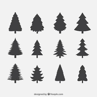 Colección de siluetas de pinos