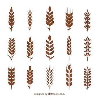 Colección de siluetas de trigo
