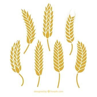 Colección siluetas de trigo