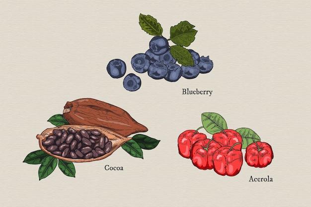 Colección de superalimentos frutas y cacao